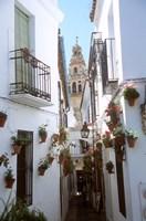 Calleja de las Flores (Flower Alley), Spain Fine-Art Print