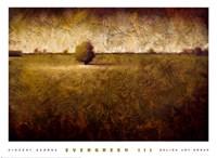 Evergreen III Fine-Art Print