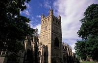Exeter Cathedral, Exeter, Devon, England Fine-Art Print