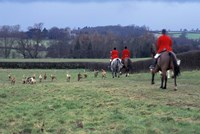 The Quorn Fox Hunt, Leicestershire, England Fine-Art Print
