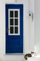 Greece, Aegean Islands, Samos, Door, Cat Fine-Art Print