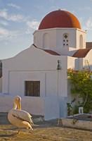 White Pelican Preening, Hora, Mykonos, Greece Fine-Art Print