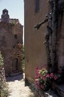 Narrow cobblestone Pathway, Monemvasia, Greece Fine-Art Print