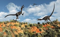 Velociraptors involved in a Territorial Dispute Fine-Art Print