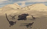 Velociraptors Encircling a  Protoceratops Fine-Art Print