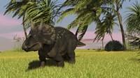 Triceratops Dinosaur 11 Fine-Art Print