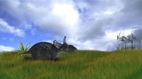 Triceratops Walking across Prehistoric Grasslands Fine-Art Print