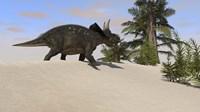 Triceratops Walking along a Prehistoric Landscape Fine-Art Print