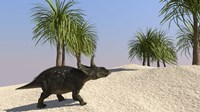 Triceratops Walking in a Tropical Environment 3 Fine-Art Print