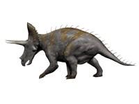 Triceratops Dinosaur 1 Fine-Art Print