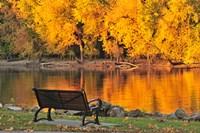 Fall Glow Fine-Art Print