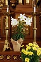 Easter Altar Fine-Art Print