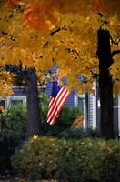 Fall Flag Fine-Art Print