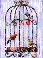 Bird Cage Fine-Art Print