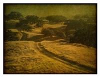 Ranch Road and Oak Savannah Fine-Art Print