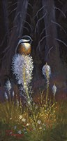 Beargrass Chickadee Fine-Art Print