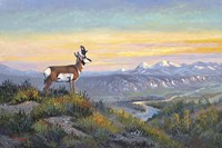 The Lookout Fine-Art Print