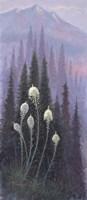 Beargrass Fine-Art Print