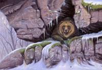 Bearly Awake Fine-Art Print