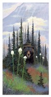 Bear Grass Fine-Art Print