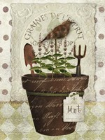 Herb Pot Mint Fine-Art Print
