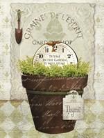 Herb Pot Thyme Fine-Art Print