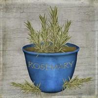 Herb Rosemary Fine-Art Print