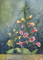 Foxgloves Fine-Art Print