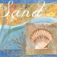 Seashells III Fine-Art Print