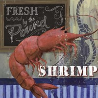 Shrimp Fine-Art Print