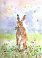 Hare Today Fine-Art Print