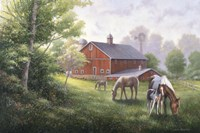 Country Road W/ Horses/Barn Fine-Art Print