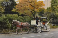 Carriage At Central Park Fine-Art Print