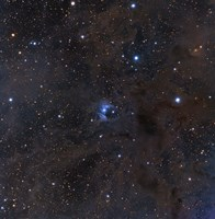 The bright star VdB 16, dust and nebulosity in the Constellation Aries Fine-Art Print