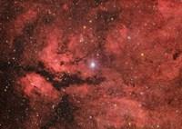 The Sadr region in the Constellation Cygnus Fine-Art Print