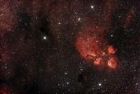 Cat's Paw Nebula in Scorpius Fine-Art Print