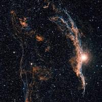 Witch's Broom Nebula (NGC 6960), and part of the Veil Nebula Fine-Art Print