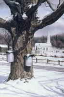 Valley Motif Fine-Art Print