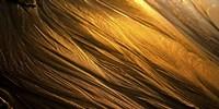 Golden Sands Fine-Art Print