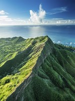 Diamond Head Summit Fine-Art Print