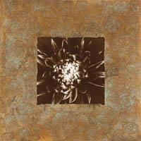 Dahlia on Copper I Fine-Art Print