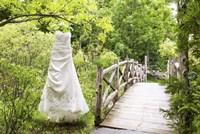 Wedding Dress Fine-Art Print