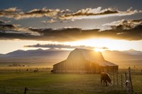 Wet Mountain Barn I Fine-Art Print