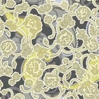 Sheer Romance Lace III Fine-Art Print
