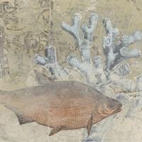 Coastal Cameo IV Fine-Art Print
