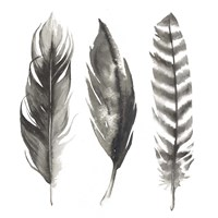 Watercolor Feathers I Fine-Art Print