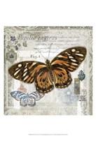 Butterfly Artifact I Fine-Art Print