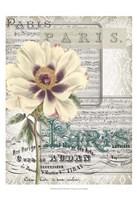 Musical Paris II Fine-Art Print