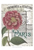 Musical Paris III Fine-Art Print