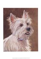 Mac West Highland Terrier Fine-Art Print